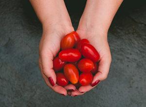 Hand hält Cherrytomaten