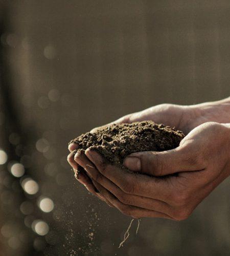 Hände gefüllt mit Erde